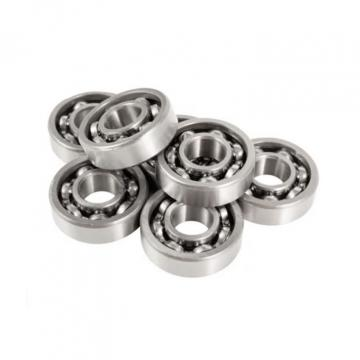 INA RASEY20-N bearing units